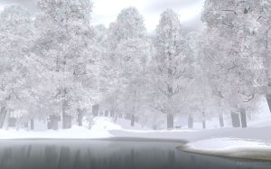 snowy_lake_and_trees-wide