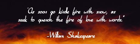 Wild Fire Banner (1)