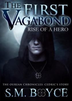 the-first-vagabond-rise-of-a-hero